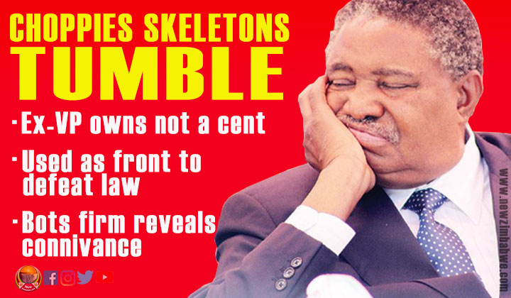 Choppies saga exposes Mphoko bribery and complicity in indigenisation law defeat