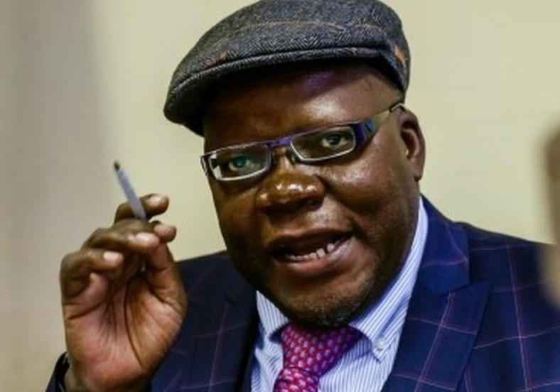 'Puppet' Biti Very Clever But Using Zanu PF Education To Undermine Revolution – Chinamasa